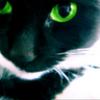 Аватар пользователя Дуняша